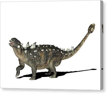 Euoplocephalus Dinosaur Canvas Print by Friedrich Saurer