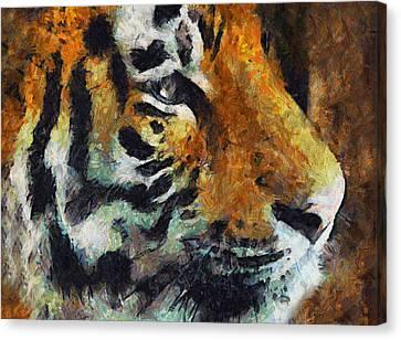 Eye Of The Tiger Canvas Print by Georgiana Romanovna