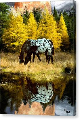 Fall Reflections Canvas Print by Roger D Hale