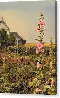 Farmhouse And Hollyhocks Canvas Print by Jill Battaglia