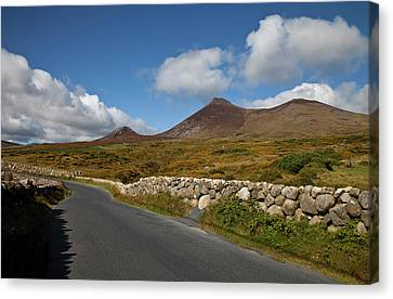 Farmland, Stone Walls In The Midste Canvas Print by Panoramic Images