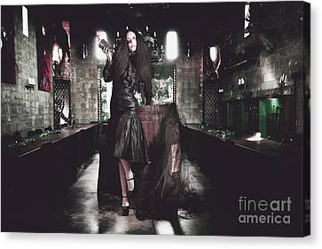 Female Event Jester At Grand Middle Ages Feast Canvas Print by Jorgo Photography - Wall Art Gallery