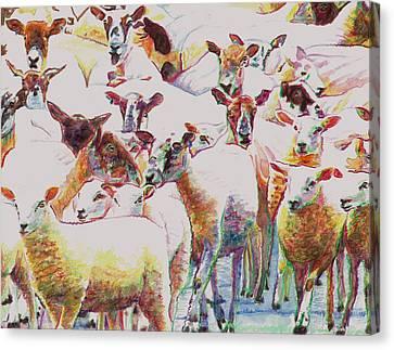 Flock Canvas Print by Helen White