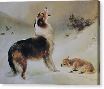 Found Canvas Print by Albrecht Schenck