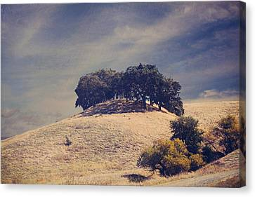 From On High Canvas Print by Laurie Search