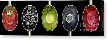 Fruit Spoons On Black Canvas Print by Tim Gainey