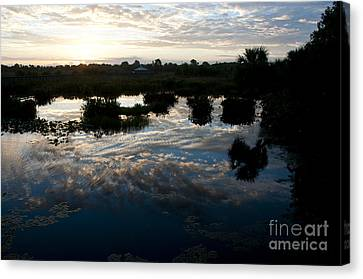 Green Cay Wetlands, Fl Canvas Print by Mark Newman