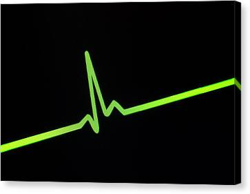 Heartbeat Trace Canvas Print by Daniel Sambraus