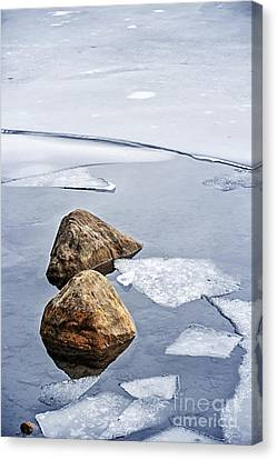 Icy Shore In Winter Canvas Print by Elena Elisseeva