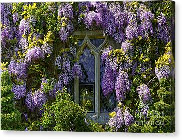 In Bloom Canvas Print by Svetlana Sewell