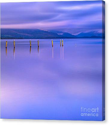In The Realm Of Giants Canvas Print by John Farnan