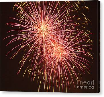 Independence Day Fireworks Canvas Print by Philip Pound