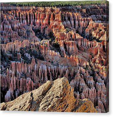 Inspiration Point Hoodoos Canvas Print by Stephen  Vecchiotti
