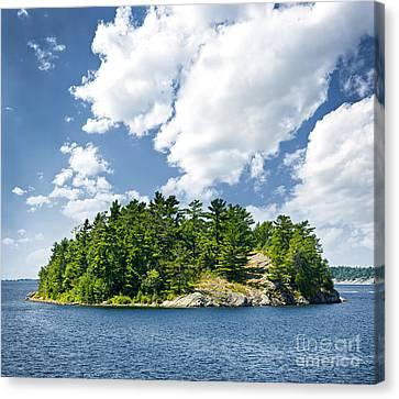 Island In Georgian Bay Canvas Print by Elena Elisseeva