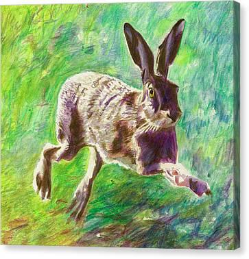 Joyful Hare Canvas Print by Helen White