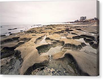 La Jolla Low Tide Canvas Print by Tanya Harrison