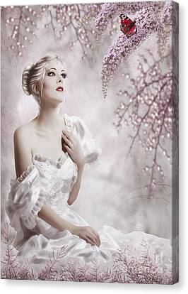 Lady Canvas Print by Svetlana Sewell