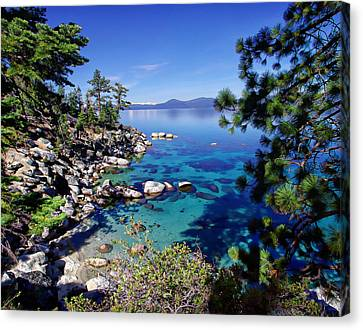 Lake Tahoe Swimming Hole Canvas Print by Scott McGuire