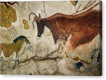 Lascaux II Cave Painting Replica Canvas Print by Science Photo Library
