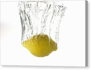 Lemon Splashing Underwater Canvas Print by Sami Sarkis
