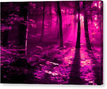 Life 3 Canvas Print by Robin Curtiss