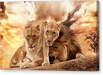 Lions Canvas Print by Christine Sponchia