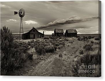 Lonely House On The Prairie Canvas Print by Mike  Dawson
