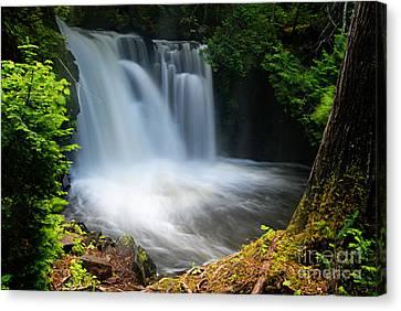 Lower Johnson Falls Canvas Print by Larry Ricker