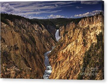 Lower Yellowstone Falls II Canvas Print by Mark Kiver