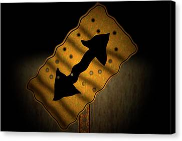 Misdirection Canvas Print by Carol & Mike Werner