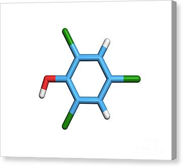 Molecule Of A Component Of Tcp Canvas Print by Dr. Tim Evans