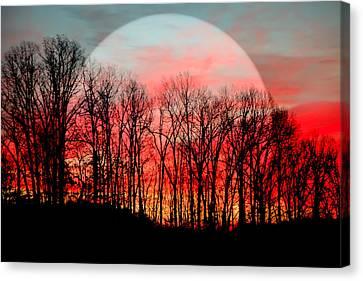 Moon Dance Canvas Print by Karen Wiles