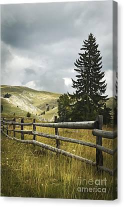 Mountain Landscape Canvas Print by Jelena Jovanovic
