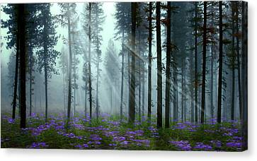 Nature's Beauty Canvas Print by Nina Bradica