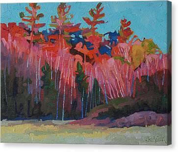 November Sunset Canvas Print by Phil Chadwick