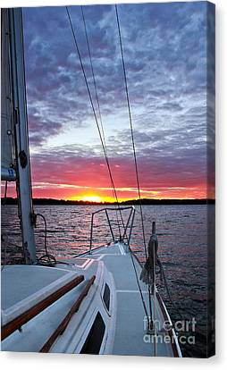 Off Into The Sunset Canvas Print by Jill Hyland