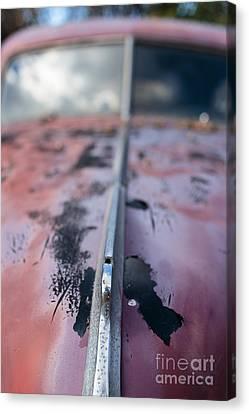 Old Junker Car  Canvas Print by Edward Fielding