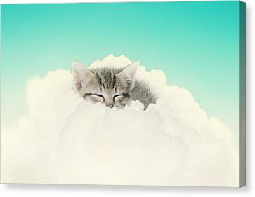 On Cloud Nine Canvas Print by Amy Tyler