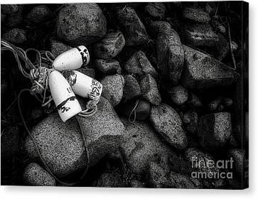 On The Rocks Canvas Print by Scott Thorp