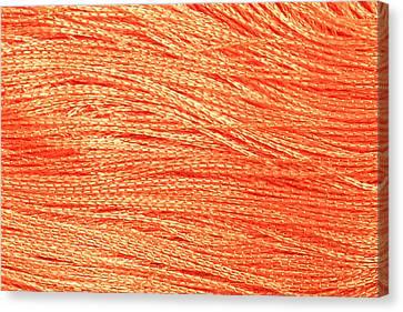 Orange String Canvas Print by Tom Gowanlock
