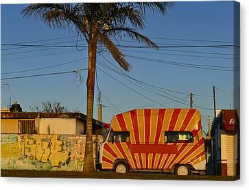 Orange Sunshine Canvas Print by Skip Hunt