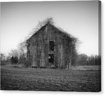 Overgrown Brush On Barn Canvas Print by Mountain Dreams