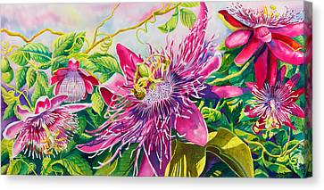 Passionflower Party Canvas Print by Janis Grau