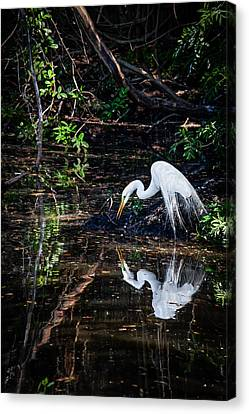 Pause For Reflection Canvas Print by Rob Travis