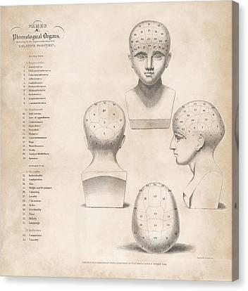 Phrenology Head Regions Canvas Print by King's College London