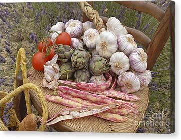 Provence Produce Canvas Print by Tony Craddock
