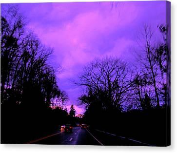 Purple Haze Canvas Print by Allen n Lehman