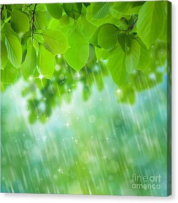 Rainforest Canvas Print by Atiketta Sangasaeng