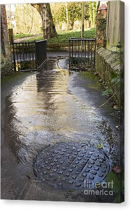 Raw Sewage Canvas Print by Sheila Terry