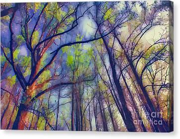 Reaching For Heaven Canvas Print by Dan Carmichael